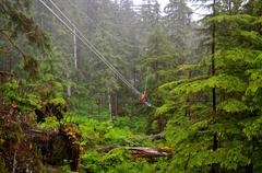 Man ziplines through forest Stock Photos