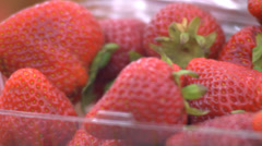 Strawberries in a Carton - stock footage