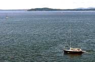 Stock Photo of sailboats in puget sound