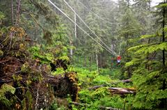 Riding the ketchikan zipline Stock Photos