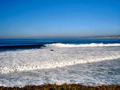 San Diego rannikolla Kuvituskuvat