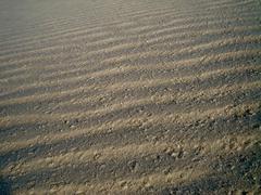 white sands - stock photo