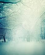 winter nature background - stock illustration