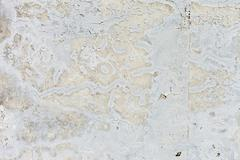 Grungy white concrete wall background Stock Photos