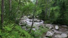 Panorama of belokurikha mountain river in altai krai. russia. Stock Footage