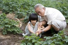 Grandfather and granddaughter gardening Stock Photos