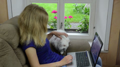 Young businesswoman sit on armchair and work with laptop and cat Stock Footage