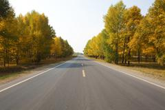 Road lined with trees on a clear blue day - stock photo