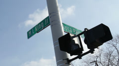 Detroit Intersection Street Signs MLK and Rosa Parks Stock Footage