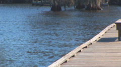 Louisiana Bayou Dock Stock Footage