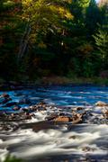 Fall Morning - stock photo
