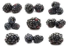 Blackberry - stock illustration