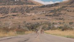 Teenage Girls Walk And Skip Down The Road Stock Footage