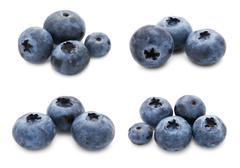 Blueberry set Stock Illustration
