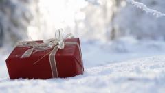 Red Christmas Decoration Frozen Branches Outdoors Background - stock footage