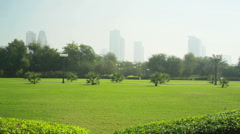 green grass in the park and city - stock footage