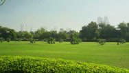 Stock Video Footage of grass and trees in the park
