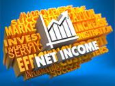 Stock Illustration of Net Income. Wordcloud Concept.