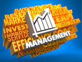 Stock Illustration of Management. Wordcloud Concept.