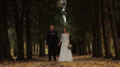 Wedding couple in a pine forest. Beautiful pine alley Stock Footage