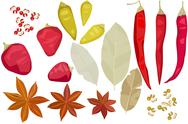 Stock Illustration of Various spices