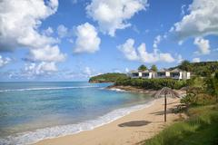 antigua beach - stock photo
