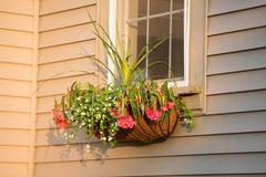 flower box with coco liner with nice arrangement infront of the window - stock photo