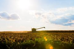 Corn harvesting machine silhouette Stock Photos
