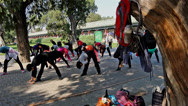 Stock Video Footage of The women do aerobics under the trees,Beijign,China