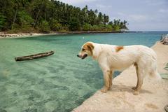equator beach - stock photo