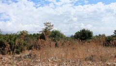Mediterranean landscape pan Stock Footage