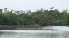 024 Sao Paulo, Ibirapuera park, pond, bridge Stock Footage