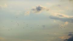 Birds flock on clouds steam sky Stock Footage