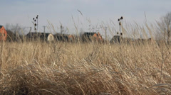 Village behind dry grass field Stock Footage