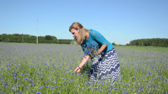 Girl gather nice bouquet of flowers in large meadow cornflower Stock Footage
