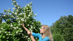 Attractive blond woman in blue pick jasmin bush white blooms Stock Footage