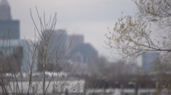 Slow motion of birds flying against city skyline shot of Cleveland Ohio Stock Footage
