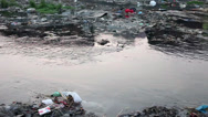 Stock Video Footage of Close up shot of a polluted river.