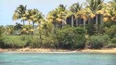 Beach house palm trees close Stock Footage