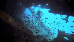 Scuba diver exploring inside shipwreck Stock Footage