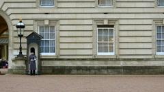 Fragment of buckingham palace guards, london, uk Stock Footage