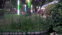 Rama ix park festival 2013 - Beautiful footbridge - (67 - 2) Stock Footage