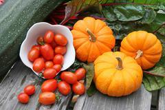 Miniature  pumpkins and swiss chard Stock Photos
