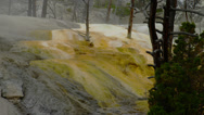 YELLOWSTONE PARK – MAMMOTH HOT SPRINGS (ZOOM OUT) Stock Footage