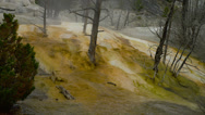 YELLOWSTONE PARK – MAMMOTH HOT SPRINGS (ZOOM IN) Stock Footage
