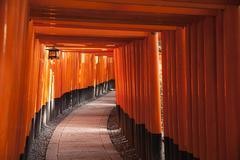 Path through torii gates Stock Photos