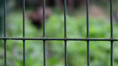 Green steel cage used Stock Footage