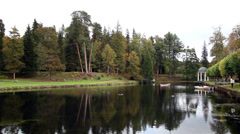 Beautiful scenery of lake and rows of trees Stock Footage