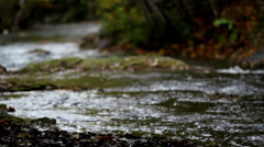 Water stream flowing white water Stock Footage