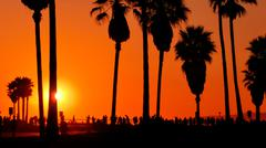 Venice Beach crowds and sunset palm trees California USA Stock Photos